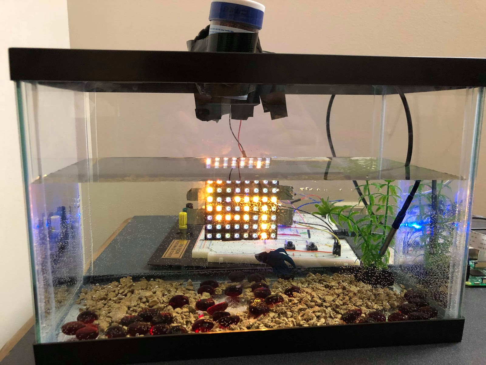 smart aquarium mbed